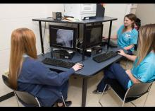 DMI students looking at images on computers in class at CCP.